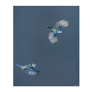 Blue Tits - Natalie Toplass - Limited Edition