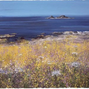 Coastal Flowers - Paul Evans - Limited Edition
