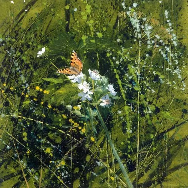 Small Tortoiseshell - Paul Evans - Limited Edition