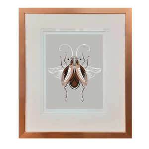 Beetle #6 - Adam Gale - Limited Edition