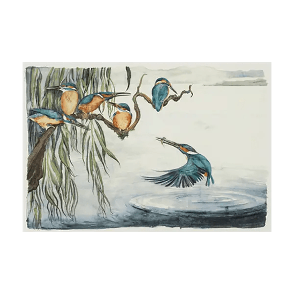 The Lost Words Kingfishers - Jackie Morris - Limited Edition