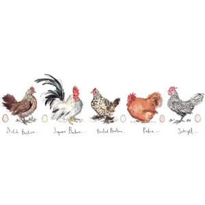 Bantams I - Madeleine Floyd - Limited Edition