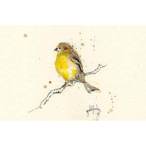 Goldfinch – Anna Wright – Giclee Print