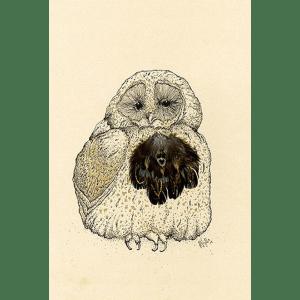 Owlie – Anna Wright – Giclee Print