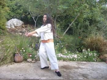 The art of qigong, Tai Chi