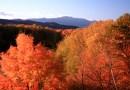 White Mountain Foliage Report 2019