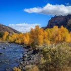 wyoming, fall, autumn, outdoor, river, adventure