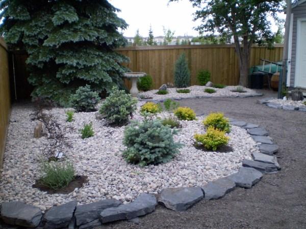 maintenance backyard landscaping