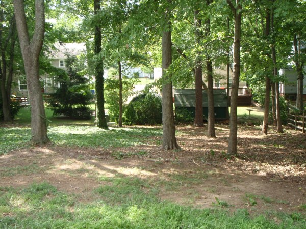 backyard-brush-removal-natural-area-maintained- landscaping-tree-clearing -2