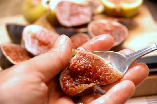 Fig Balsamic Recipes
