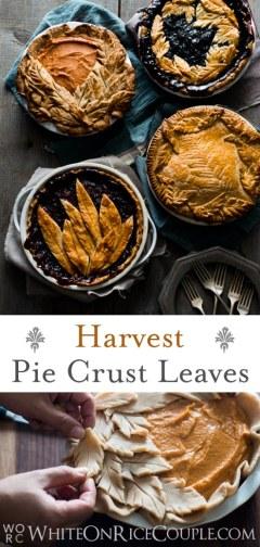 Tutorial sobre cómo hacer magníficos pasteles de cosecha con diseños de corteza de pastel de hojas   @blanco
