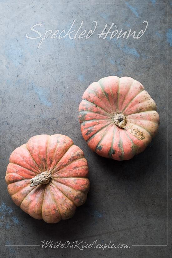 Winter Squash and Pumpkin Guide   Speckled Hound Squash @whiteonrice