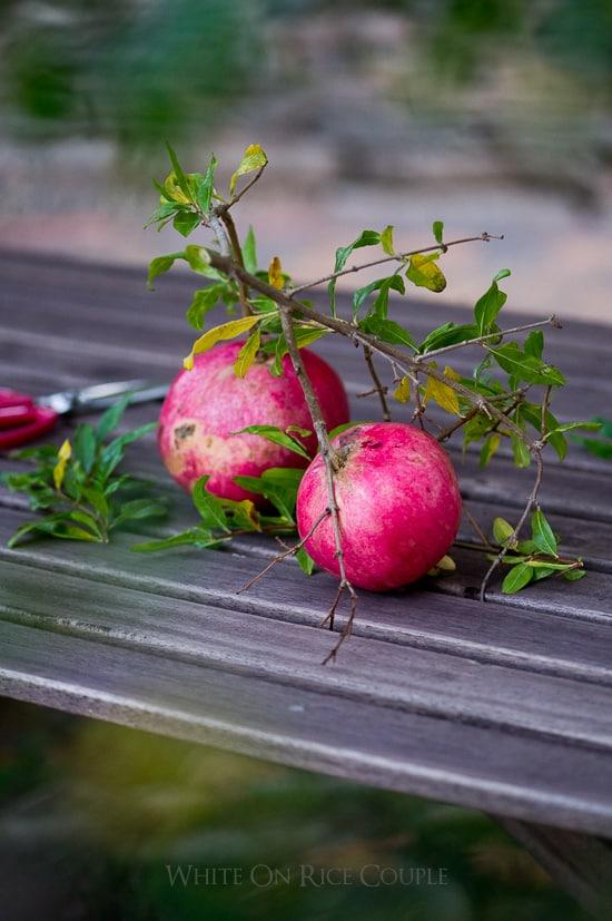 Fresh pomegranate Fruit from @whiteonrice garden