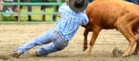 cowboy-1600x715