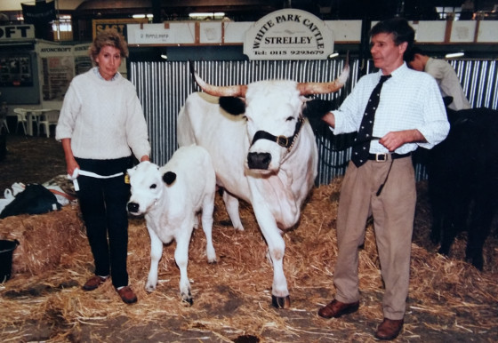 Jennifer and David Appleyard showing their beloved White Park cattle