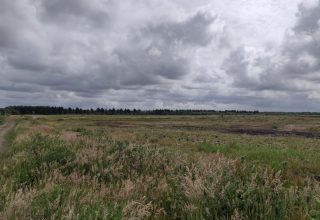 New Submission: Land at Simonswood Moss, Kirkby