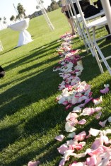 Outdoor wedding showing aisle with rose petals