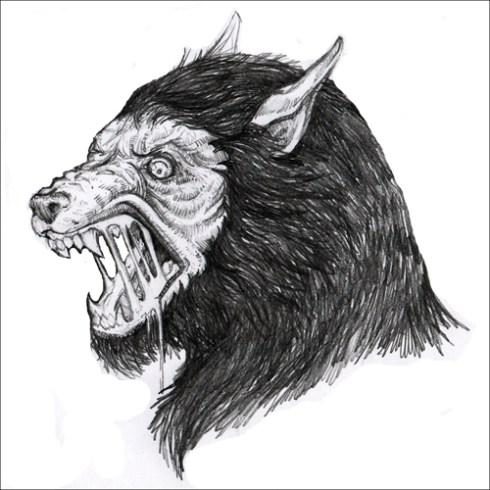 Werewolf drawing whiterabbitartcom blog