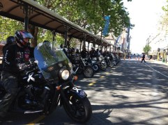 Bikes lined up in Octagon