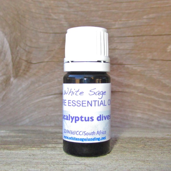 Eucalyptus Dives Essential Oil 5ml