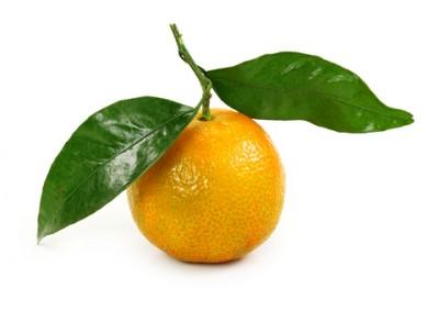 clementine orange essential oil 2