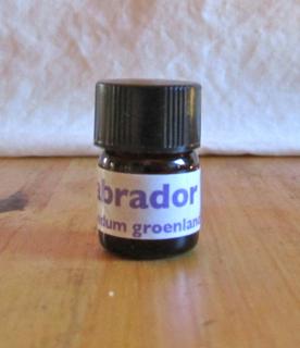 Labrador tea essential oil 3