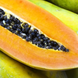 papaya seed botanical oil 2
