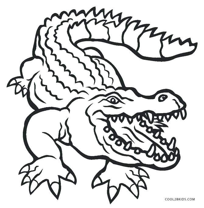 alligator coloring page cute pages persianfitclub