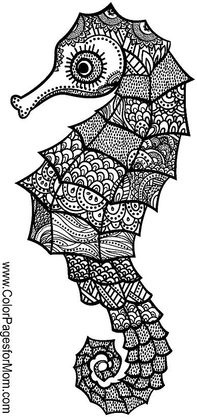 animal coloring page 135 ausmalbilder colouring pages