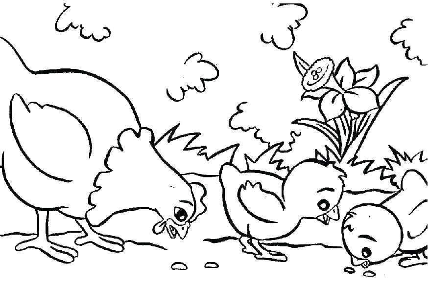 animal coloring pages online schuelertraining
