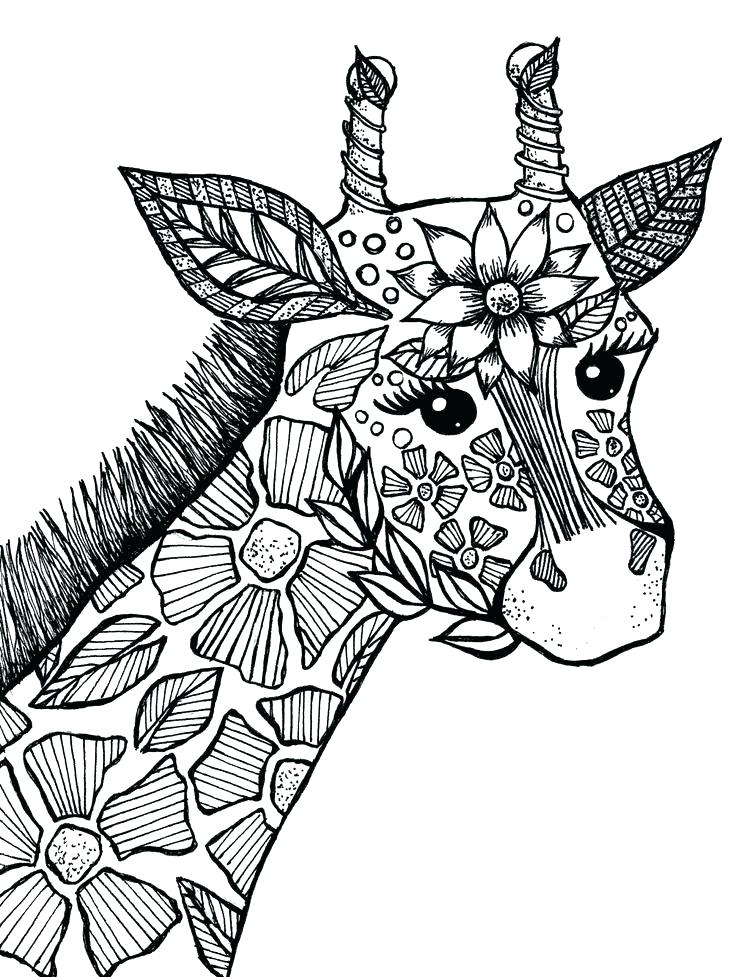 animal coloring pages rutuesday