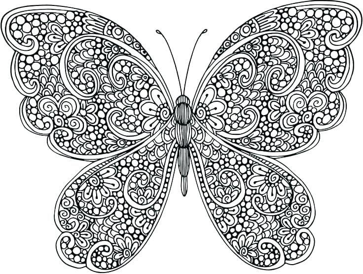 animal mandala coloring pages dibujos de mariposas