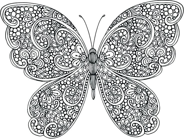 animal mandala coloring pages dibujos de mariposas