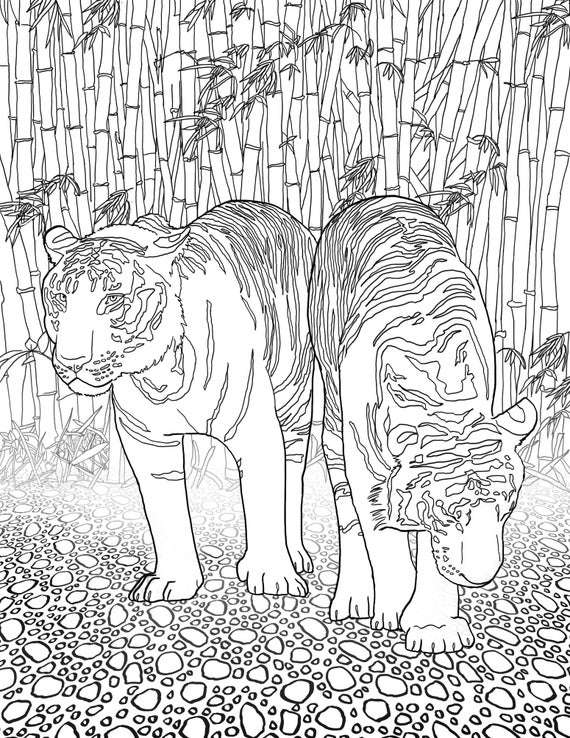 animal patterns coloring pages 5 pages for adult colorning