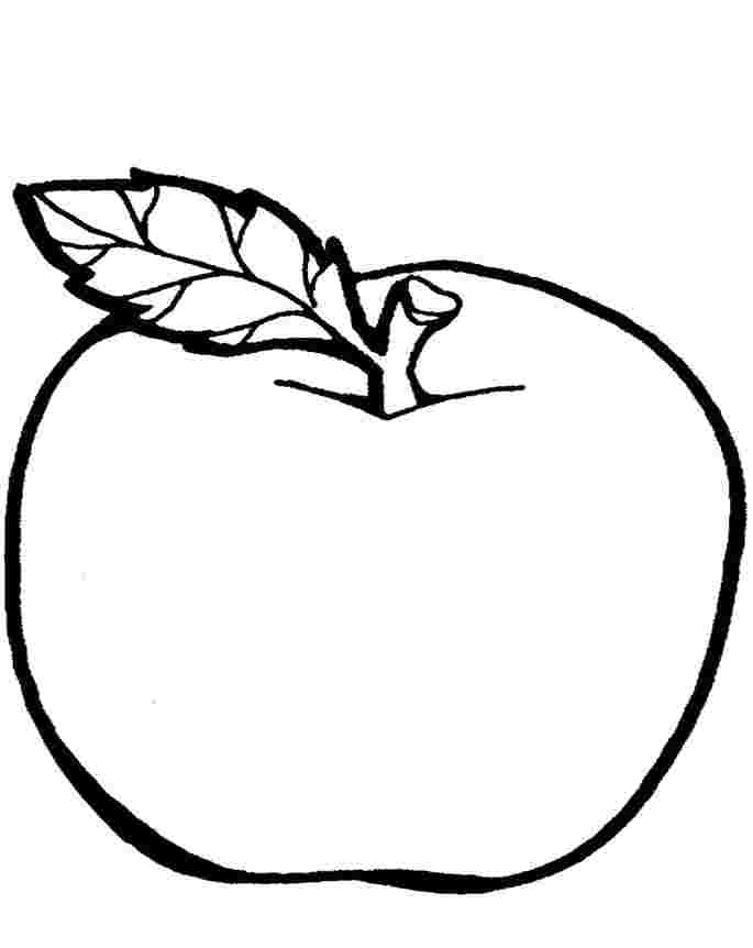 apple coloring pages easy easy coloring pages coloringrocks