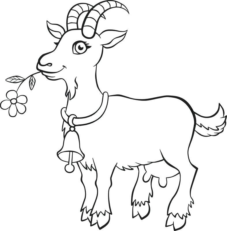 ba goat coloring pages at getdrawings free for