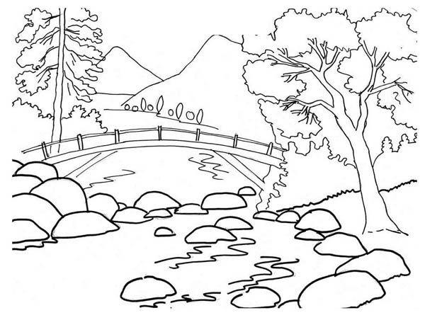 beautiful river bank landscape nature coloring crazy