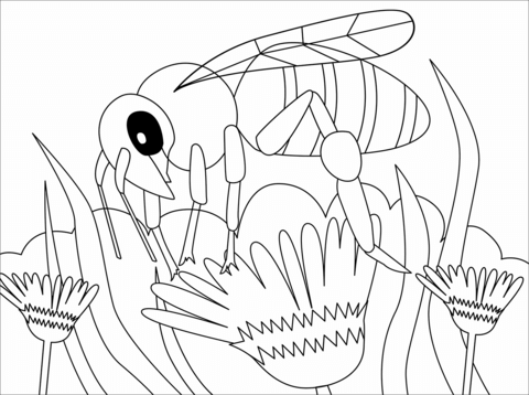 bee coloring page free printable coloring pages