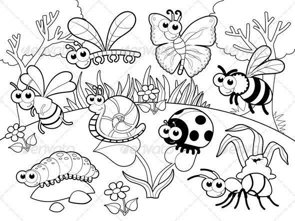 bugs and a snail animals characters insect coloring