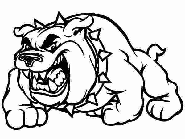 bulldog face coloring pages bulldog face drawing at