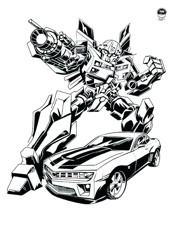 bumblebee coloring pages bumble bee pictures to color