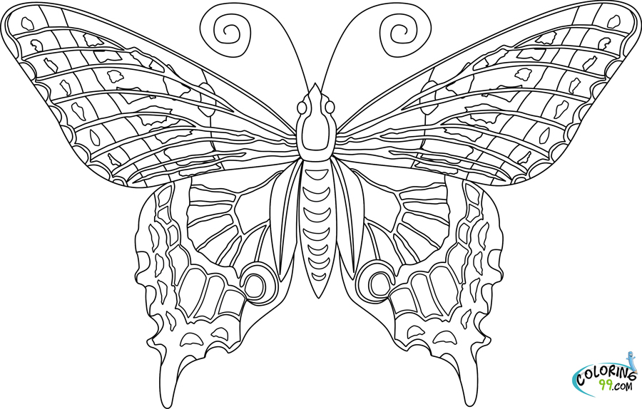 butterfly coloring pages for adults timeless miracle