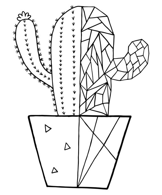 cactus coloring pages succulent coloring pages cacti coloring pages set of three