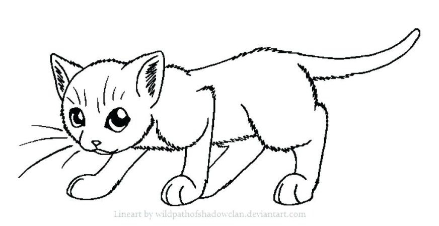 cartoon cat coloring pages download fun for kids