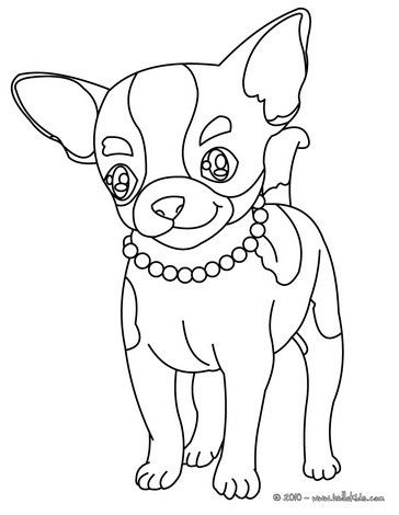chihuahua coloring page for kids malvorlage hund