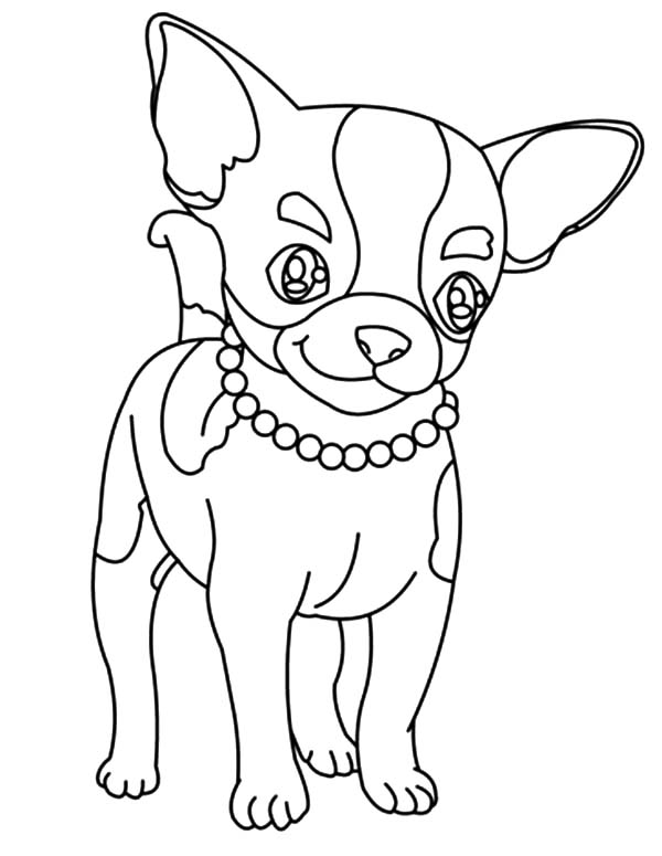 chihuahua coloring pages at getdrawings free for