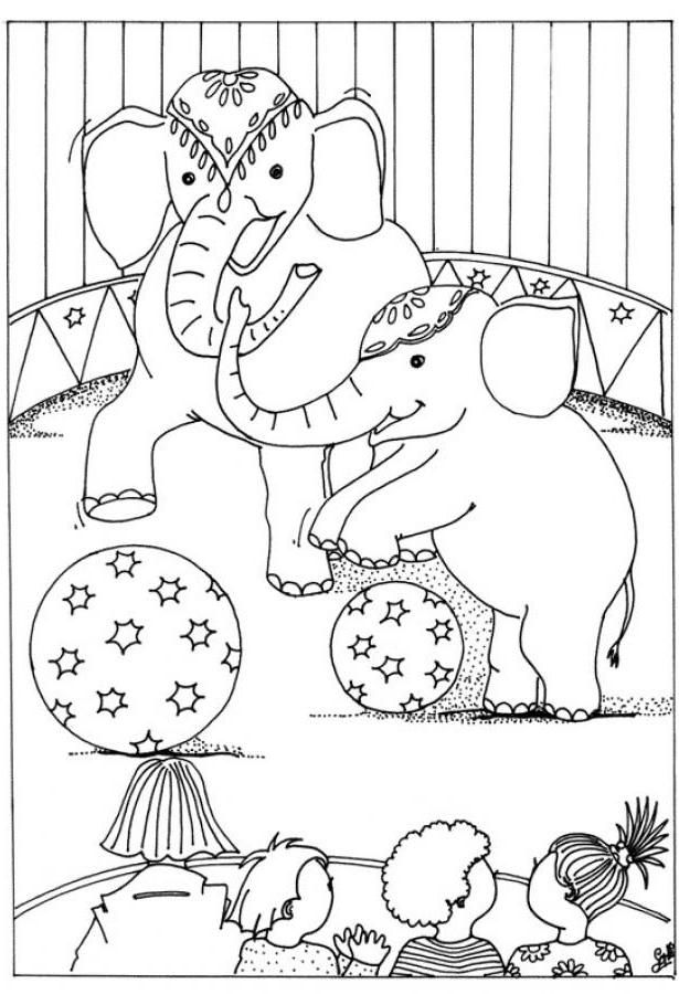 circus coloring pictures of animals printable coloring