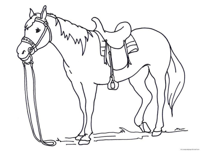 coloring book coloring pages spirit riding free horses