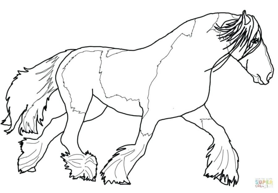 coloring page horse free pages horses printable ruidosoclub