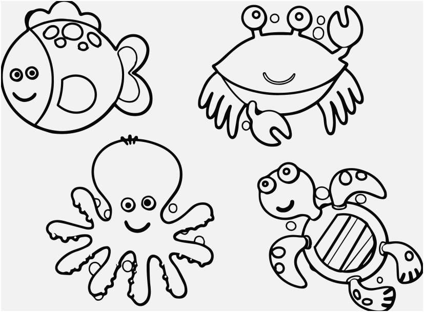 coloring pages animals pictures charming inspiration ocean